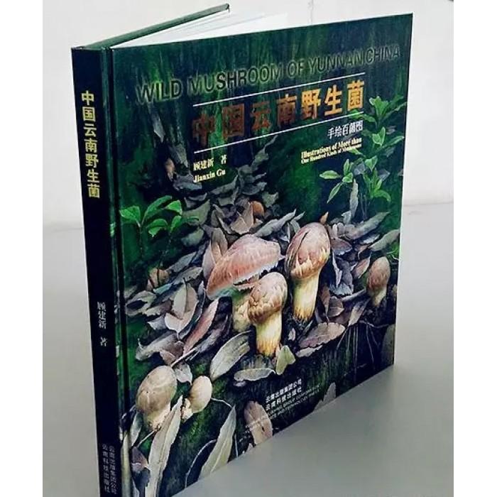《中国云南野生菌》 中国第一部手绘自然生态环境蘑菇画专著 顾建新 著   原价180元 破损(不影响阅读)清仓折扣价162元