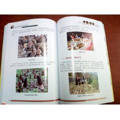 《中国羊肚菌高产栽培新技术》
