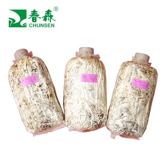 春森牌天麻萌发菌石斛小菇母种、原种、栽培种