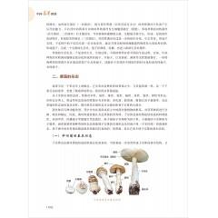 【新书力荐】《中国毒蕈图鉴》  顾新伟 陈再鸣 吴邦仁 编著