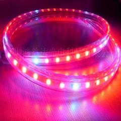 食用菌光照培育LED灯带  18元/米  订购100米及以上包邮普通快递
