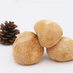 华裕新美福建猴头菇