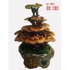 乐民   灵芝盆景盆栽干灵芝室内观赏种植灵芝客厅办公桌创意植物