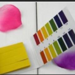 食用菌栽培培养料酸碱度测试 酸碱度测试纸 食用菌专用PH试纸